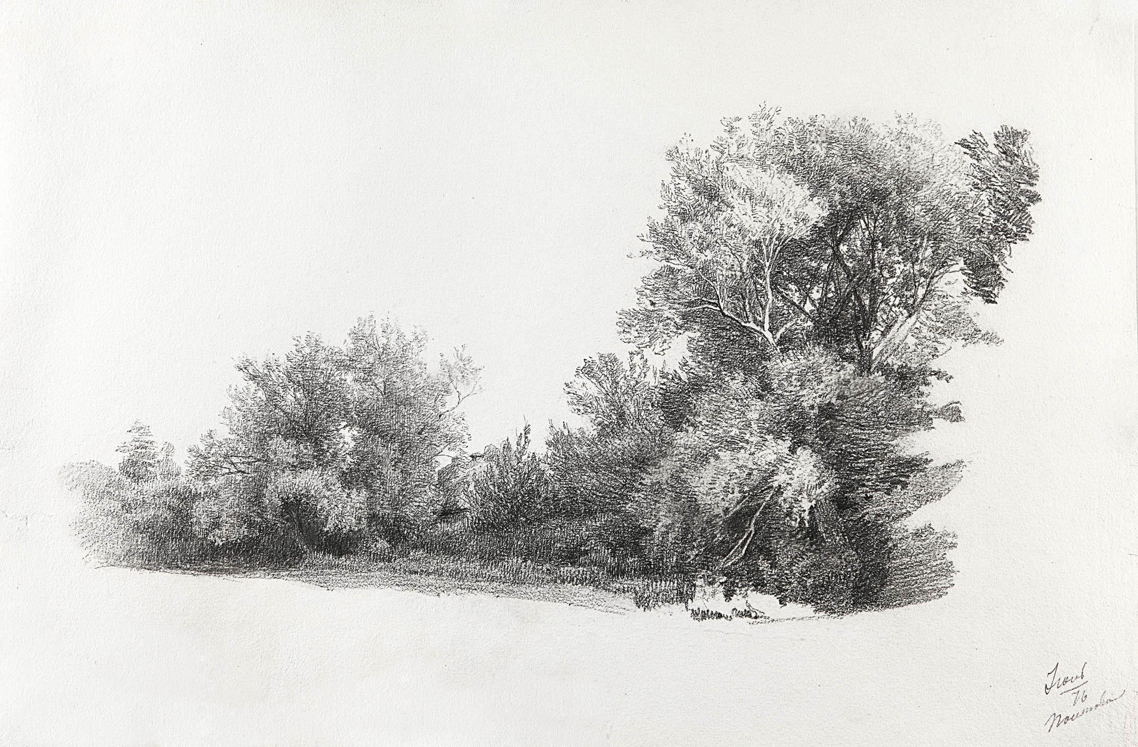 Пейзаж с деревьями (Полтава)